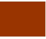 ブラッシュアップセミナーは、影山なお子が主宰する、健康支援者のスキルアップ、テーマ研究、交流などを目的とした、健康支援者のためのサークルです